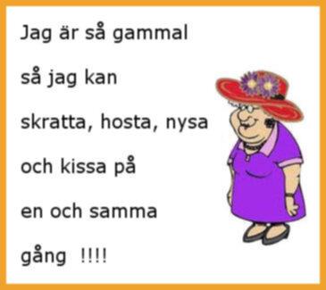 roliga sexleksaker er på svenska