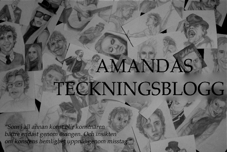 teckningsamanda